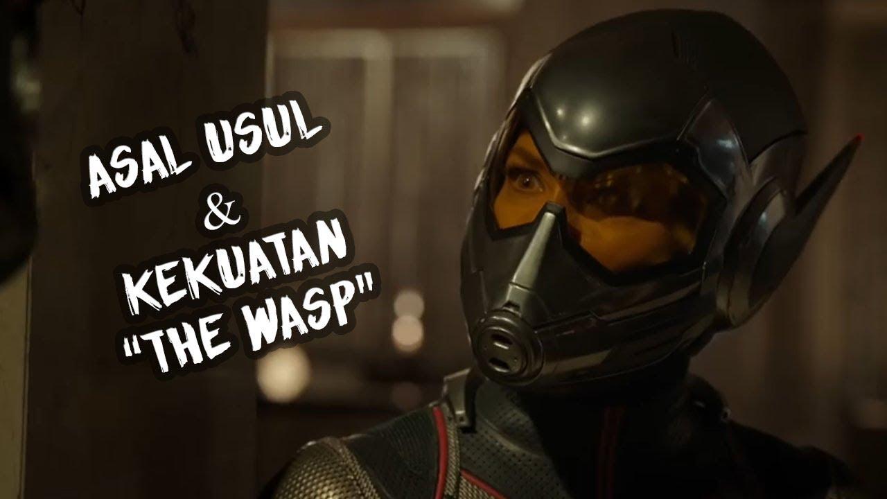 """inilah asal-usul & kekuatan 'the wasp"""" superhero di film ant-man"""