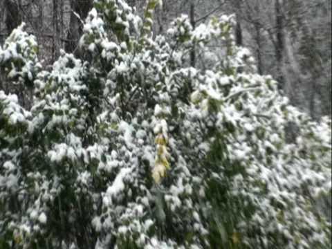 snow in buford georgia in h.d