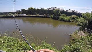 霞水系!どうしても釣りたいときはココ!!やはり今回も同じ思いで釣りしてみた...