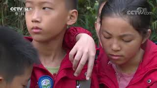 《快乐体验》 20200326 小勇士训练营|CCTV少儿