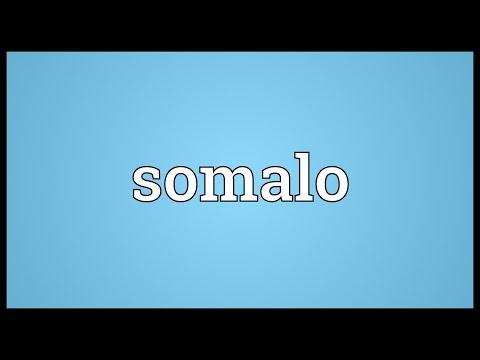 Header of somalo
