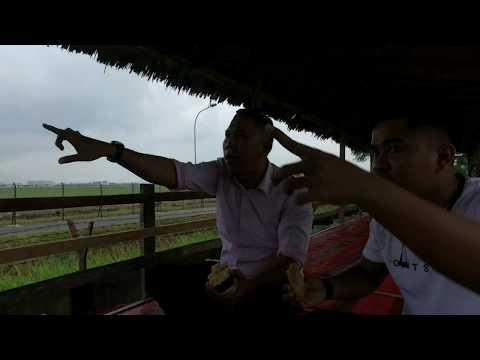 Lihat Pesawat di Pinggir Runway Bandara Kualanamu #JimmydanEko