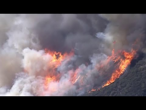 See Strong Winds Fuel Destructive Southern California Wildfire
