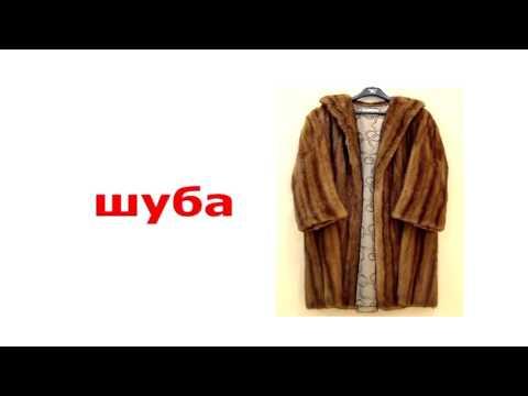 картинки мода и стиль одежды