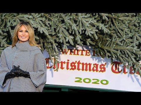 AFP Deutschland: Melania Trump nimmt Weihnachtsbaum für Weißes Haus in Empfang   AFP