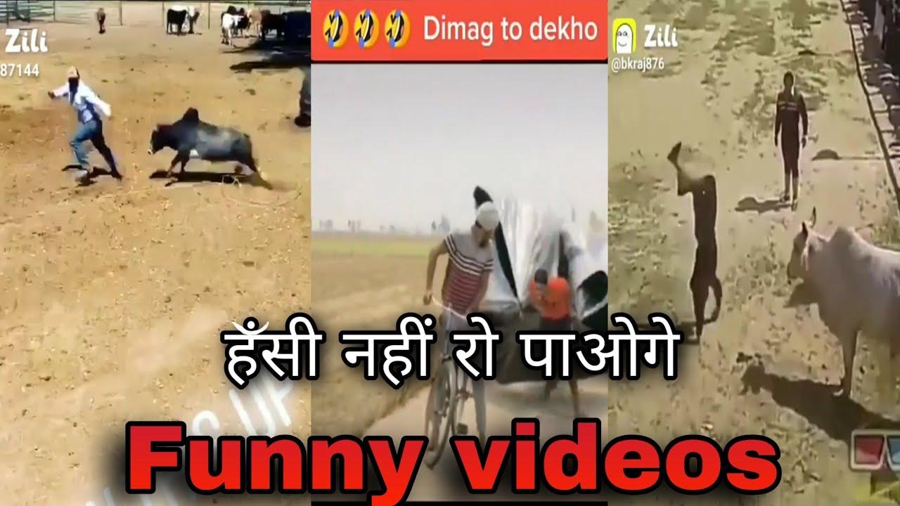 Download Funny zilli videos// funny videos// zilli video// zilli funny videos//funny video //videozillifunny