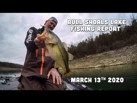 Bull Shoals Lake Fishing Report | Mid-March | Del Colvin