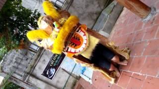 Thanh son bqhg 1