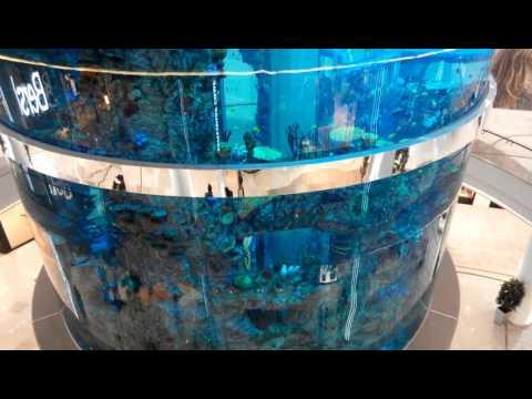 МОСАКВАРИУМ аквариум, изготовление аквариумов