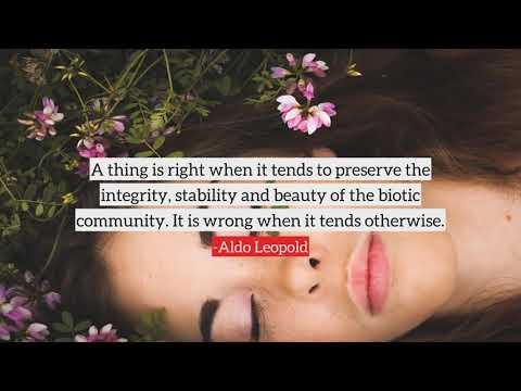 Aldo Leopold Top Quotes, Best Quotes From Aldo Leopold