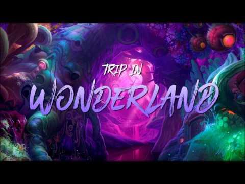 Narkis - Trip In Wonderland