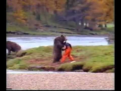 Man Fighting Bear For Salmon!