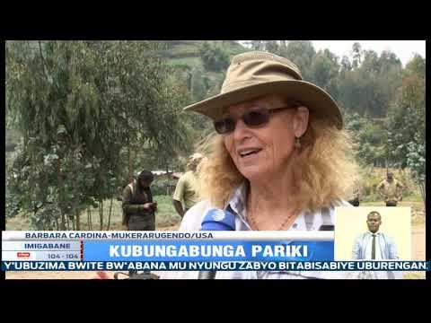 Download Pariki y'Igihugu y'Ibirunga ni imwe mu zibungabunzwe neza mu ruhando rw'Afurika