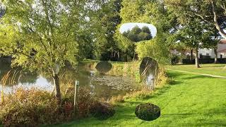 France. Франция. Прогулка по парку  или Уж небо осенью дышало