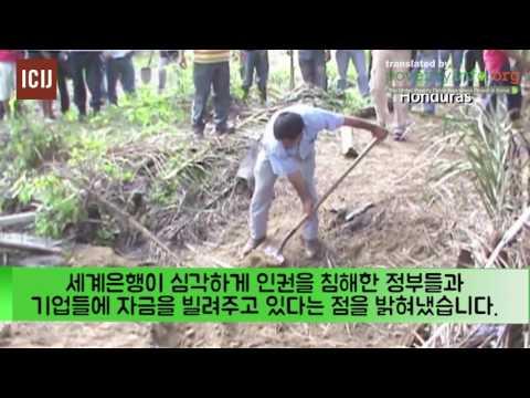 세계은행의 개발로 삶의 터전을 잃어버린 사람들 (ICIJ)
