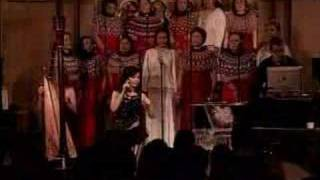 Possibly Maybe-bjork-live at the riverside church