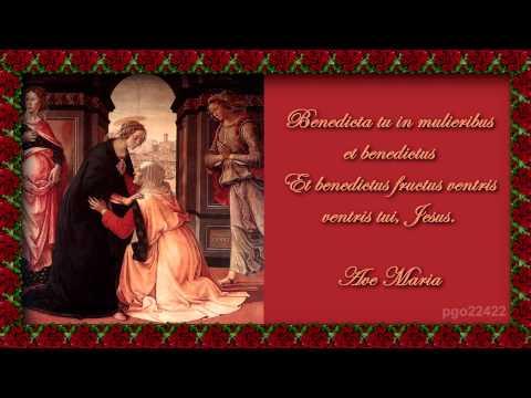 Franz Schubert-Ave Maria en latin.mp4