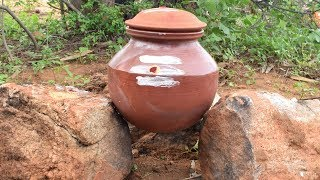 Delicious Sweet Jaggery Pongal in New Clay Pot | Manpaanai Sakkarai Pongal Recipe | Wild Food