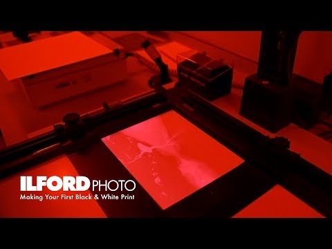 Making Your First Black & White Print