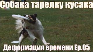 Собака тарелку кусака. Деформация времени. Ep.05