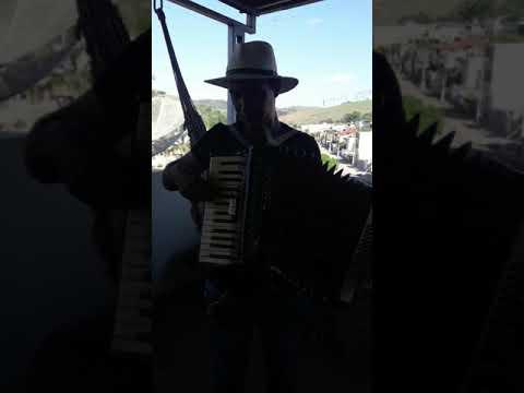 Danilo cavaquinho de laranjal MG tocando uma musica na acordeon🎹🎶