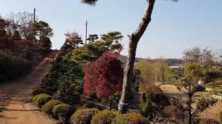 산림기술사/조경학 개론/향촌조경 탐방 2