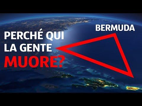 Chi Vive Sul Fondo del Triangolo Delle Bermuda?