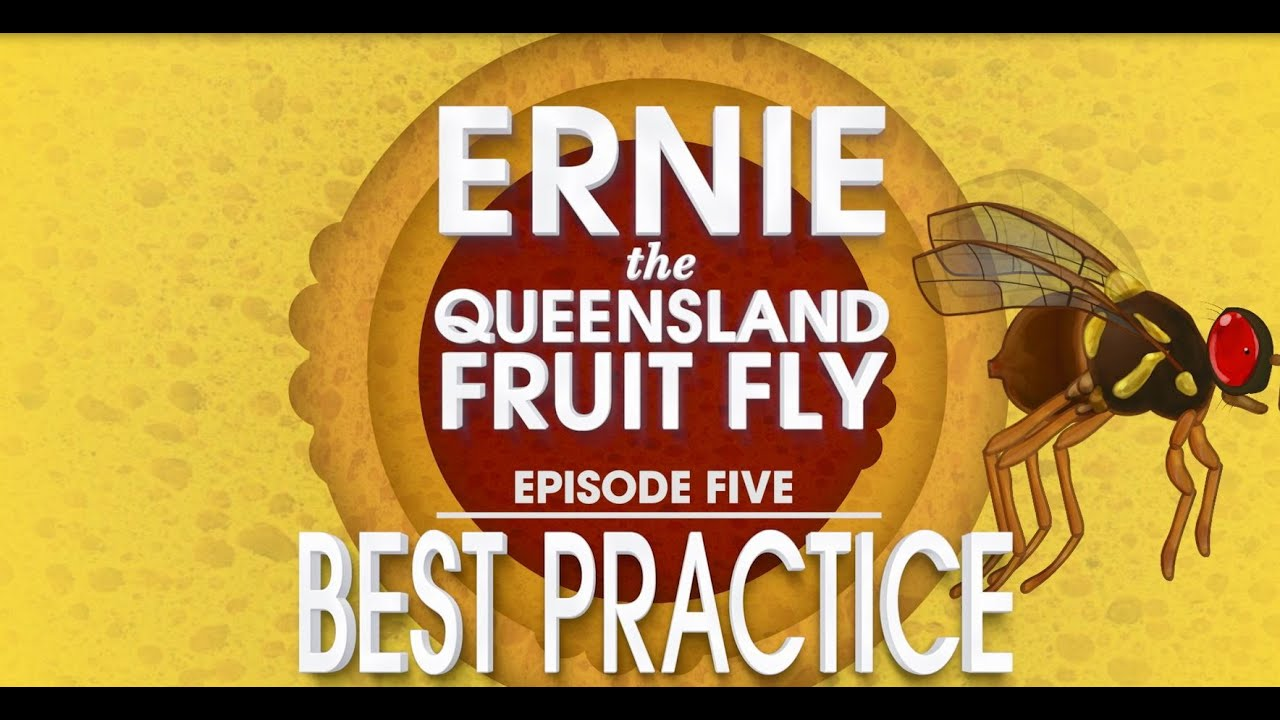 Choosing a control strategy – Prevent Fruit Fly