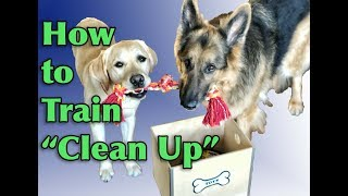 "Dog Training Tutorial: ""Clean up"" / Put Away Objects"