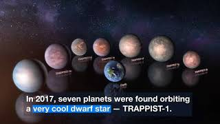 "Trappist-1 Planets May Harbor ""Lots and Lots"" of Water"