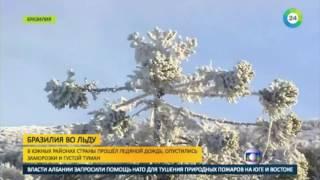 Жаркую Бразилию сковал мороз   МИР24