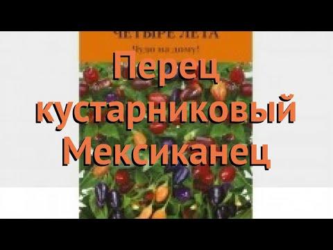 Перец кустарниковый Мексиканец (meksikanets) 🌿 обзор: как сажать, семена перца Мексиканец | кустарниковая | мексиканец | meksikanets | перец | обзор | me