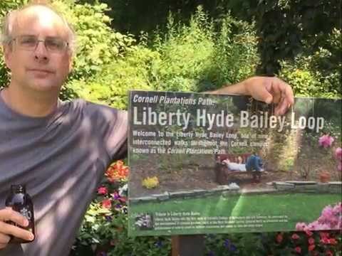 In Search of Liberty Hyde Bailey Episode 8- Chapter 6: Homecoming