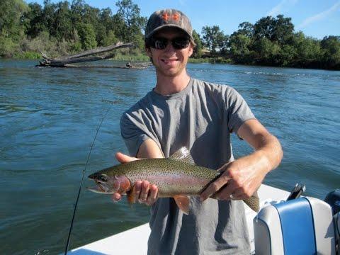 Flatfish Trout!
