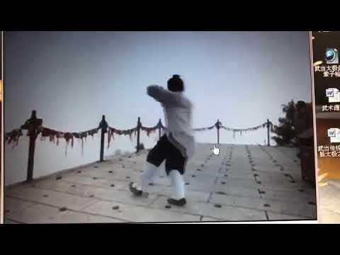 Мастер Вэнь Сюань Чжэнь. Багуа / Shifu Wen Xuan Zhen. Bagua.