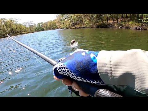 Getting Back To Normal.... Largemouth Bass Fishing At Piney Run .