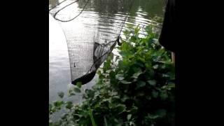 Mooie spiegel op camping slot cranendonck
