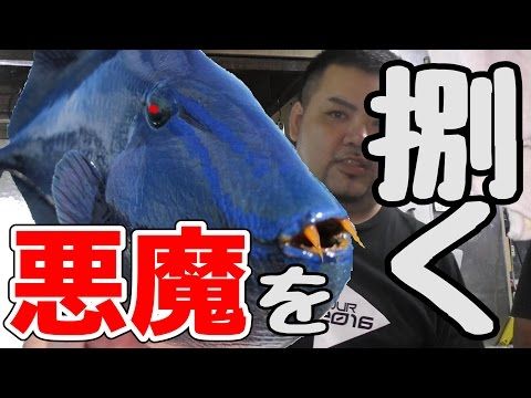 ドラキュラと呼ばれてる魚が存在した【スペースデリバリー】