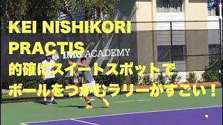 【錦織圭 練習】的確にスイートスポットでボールをつかむラリーがすごい!【IMG ACADEMY2015】 thumbnail
