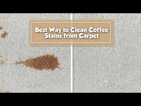 best-way-to-remove-coffee-stain-from-carpet-|-stain-fu