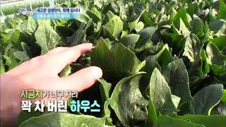 [내고향 상생장터, 합께 삽시다] 친환경 급식 농가 살…