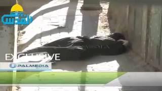 بالفيديو     لحظة إطلاق جنود الاحتلال، النار على الشهيدة هديل الهشلمون