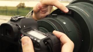 Sigma 200-500 mm f2.8: review