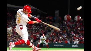 El Equipo A Vencer Este Año En La LMB L Polémica Puro Beisbol