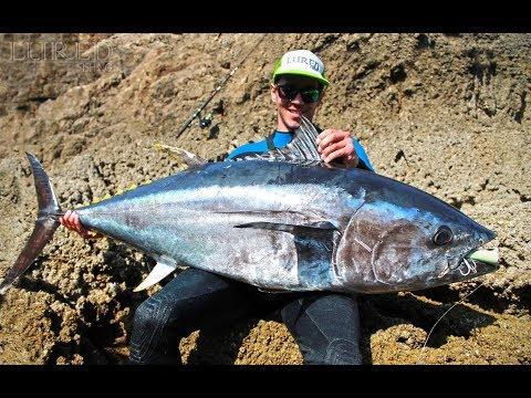Dünya Rekoru Kıyıdan Mavi Yüzgeçli Orkinos Avı ( World Record Land Based BFT ) Mp3
