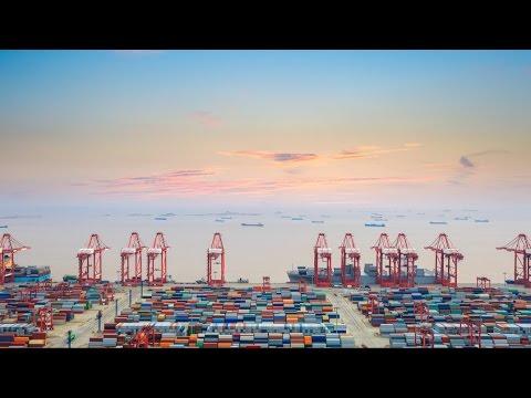 Xeneta - Changing Shipping & Global Logistics