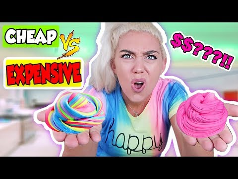 CHEAP VS EXPENSIVE PUTTY SLIME! WHICH PUTTY SLIME WAS BETTER?! | NICOLE SKYES