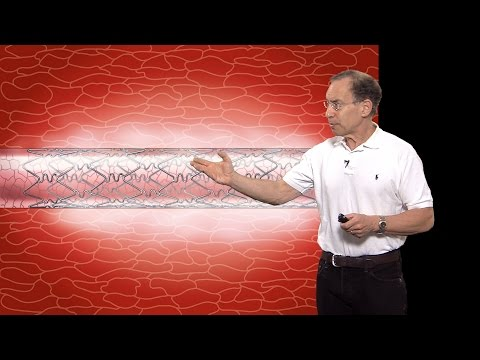Robert S. Langer (MIT) Part 1: Advances in Controlled Drug R