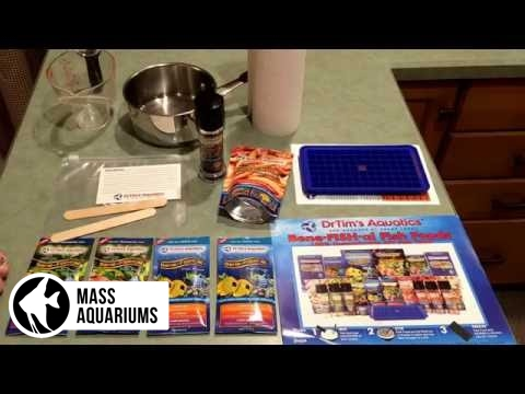 Making homemade frozen fish food with dr tims bene fish for Homemade fish food