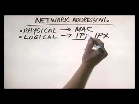 CHAPTER 6 NETWORK ADDRESSING Networking Basic